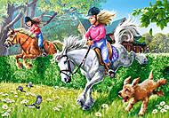 Пазл на 260 деталей «Лошадиные скачки», B-26913, купить