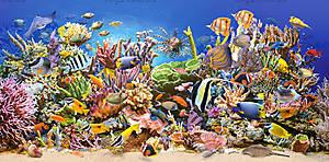Пазл на 4000 деталей «Подводный мир», C-400089