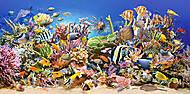 Пазл на 4000 деталей «Подводный мир», C-400089, toys
