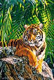 Пазл на 500 деталей «Тигрица», В-51649