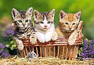 Пазл на 500 деталей «Три котёнка в корзине», В-51168