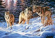 Пазл на 500 деталей «Волки в зимнем лесу», В-51793, купить