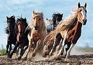 """Пазл """"Скачущие лошади"""" 1000 элементов , 10446, купить"""