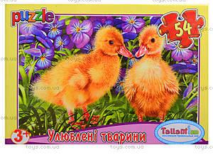 Детские пазлы MINI «Любимые животные», 54 элемента, 43210, отзывы