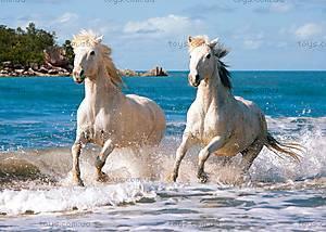 Пазл Castorland на 1000 деталей «Белые лошади», 2433