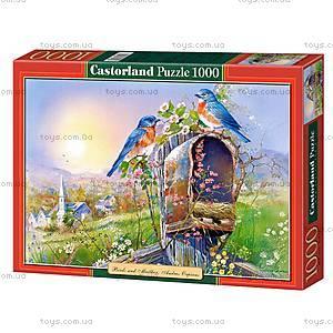 Пазл Castorland на 1000 деталей «Птицы и почтовый ящик», 2662