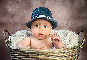 Пазл Castorland на 1000 деталей «Маленький джентельмен», 2969