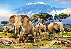 Пазл Castorland на 1000 деталей «Утро на Килиманджаро», С-103188