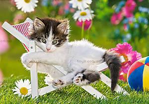 Пазл Castorland 120 midi «Котёнок на стуле», 12671