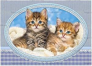 Пазл Castorland 120 midi «Котята на одеяле», 13111
