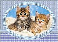 Пазл Castorland 120 midi «Котята на одеяле», 13111, фото