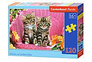 Пазлы Castorland 120 midi «Котята в кресле», В-133, купить