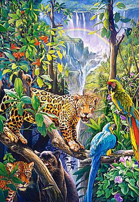 Пазл Castorland на 1500 деталей «Рай», 0885