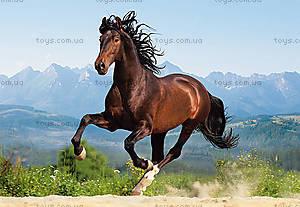 Пазл Castorland на 1500 деталей «Лошадь в галопе», С-150755
