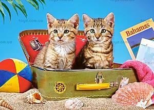 Пазл Castorland на 180 деталей «Котята», В-018086, купить
