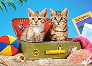 Пазл Castorland на 180 деталей «Котята», 086, фото