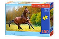 Пазлы Castorland 180 «Весенний ветер», В-018314, отзывы