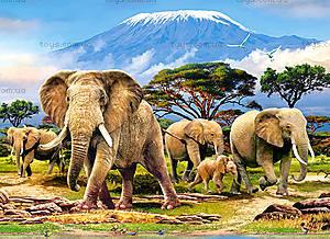 Пазл Castorland на 300 деталей «Утро в Килиманджаро», 019