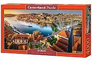 Пазлы Castorland 4000 «Польша», С-400232, отзывы