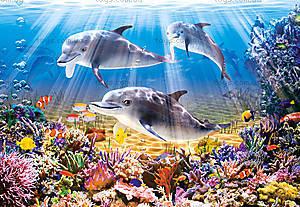 Пазл Castorland на 500 деталей «Дельфины под водой», 1014
