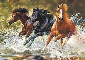 Пазл Castorland на 500 деталей «Три лошади», В-51823