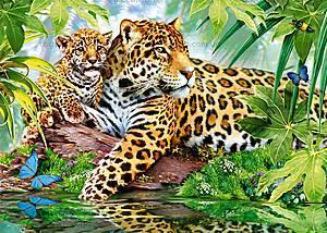 Пазл Castorland на 500 деталей «Ягуары у воды», В-52011
