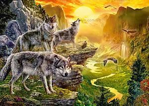 Пазл Castorland на 500 деталей «Долина волков», В-52073