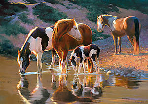 Пазл Castorland на 500 деталей «Лошади у воды», В-52097