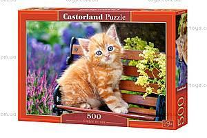 Пазл Castorland на 500 деталей «Рыжий котенок», В-52240, купить