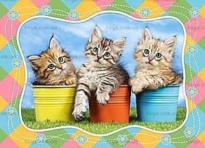 Пазл Castorland на 60 деталей «Три котенка», 762