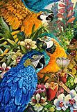 Пазлы Castorland на 1000 деталей «Амазоны», С-103485, фото