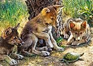 Пазлы Castorland на 260 деталей «Волчата с черепахой», В-27385, фото
