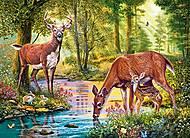 Пазлы Castorland на 300 деталей «Олени у реки», В-030132, фото