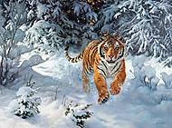 Пазлы Castorland на 500 деталей «Тигр в снегу», В-52400, фото