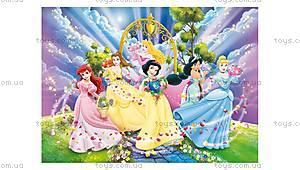 Пазлы «Друзья принцесс», 48274