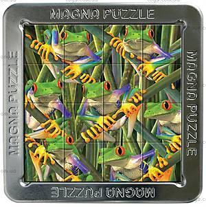Пазлы «Лягушки» магнитные 3D, 16 элементов, 21225