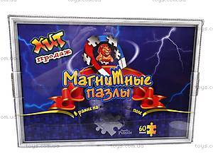 Пазлы магнитные для детей, , детские игрушки
