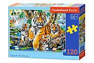 Пазлы midi «Семья тигров» 120 элементов, B-13517, магазин игрушек