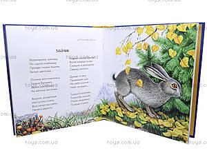 Книга для детей «Ярко солнце светит. Русская классика», Р137004Р, купить