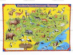 Детский плакат-карта «Животные Украины», 0193а, фото