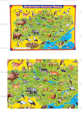 Детский плакат-карта «Животные Украины», 0193а