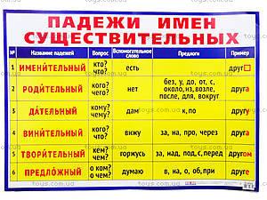 Плакат для детей «Падежи имен существительных», 0124а