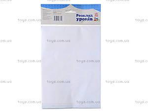 Плакат с наклейками «Расписание уроков», Л4220 Р, купить