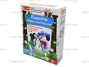 Набор для выращивания кристаллов «Цветущий сад», 0361