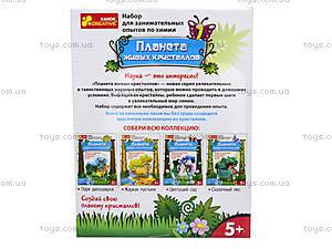 Набор для выращивания кристаллов «Цветущий сад», 0361, фото