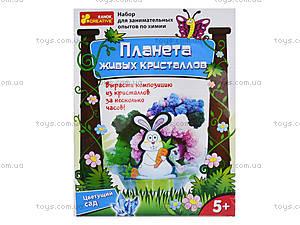 Набор для выращивания кристаллов «Цветущий сад», 0361, отзывы