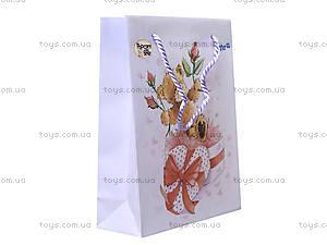 Пластиковый подарочный пакет Popcorn, PO13-204K, купить