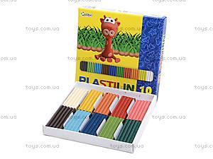 Детский пластилин для лепки, 10 цветов, Ц259020У, купить