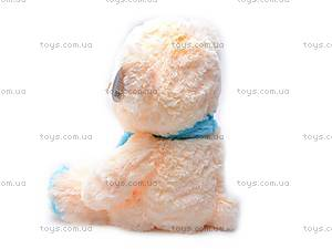 Плюшевая игрушка «Медведь с шарфом», S38-1488/33, отзывы
