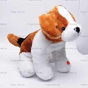 Плюшевая собака, музыкальная, Q-271-136V